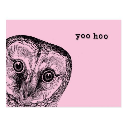 yoo_hoo_owl_greeting_in_pink_postcard-r830d9dd85dc94104b141bca673b177af_vgbaq_8byvr_512